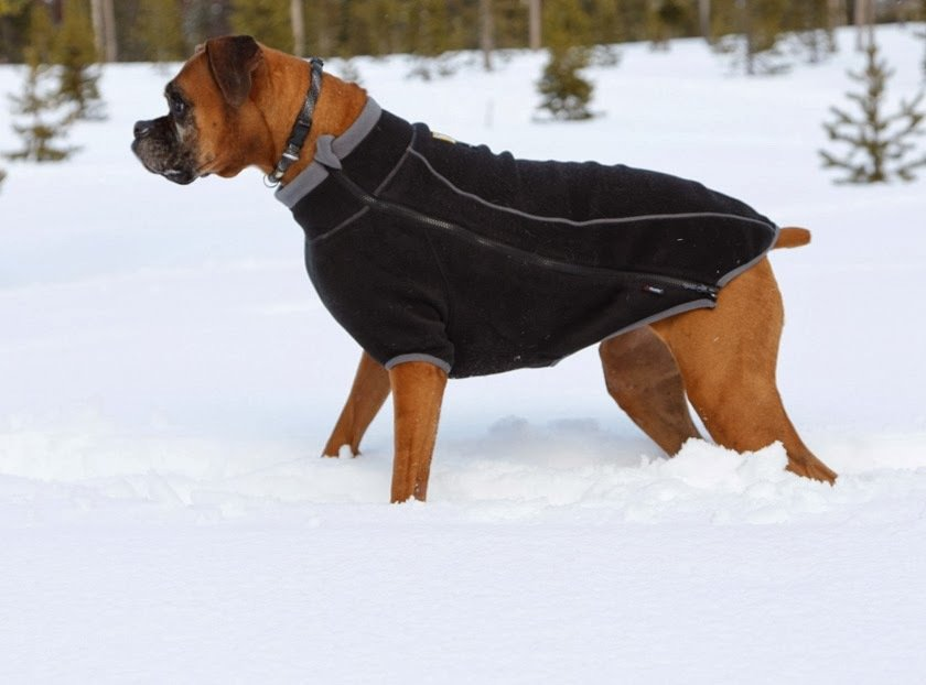 X Large Breed Dog Clothes