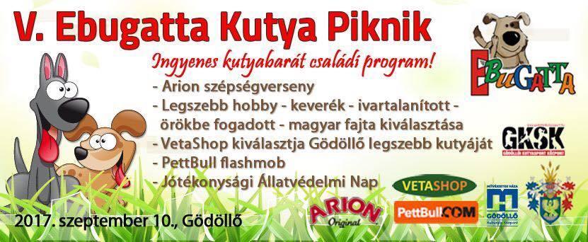 V Ebugatta Kutya Piknik Jótékonysági Állatvédelmi Nap